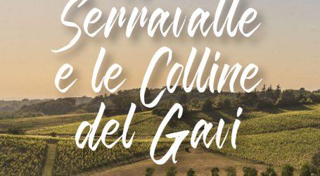 """""""Novi, Serravalle e le Colline del Gavi"""" nella guida bilingue"""