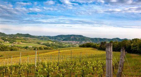 E ora serve un vino che identifichi il territorio